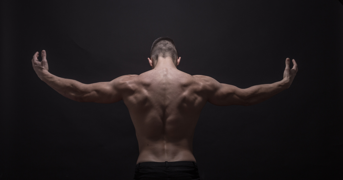 5 Exercises for Building Back Muscles