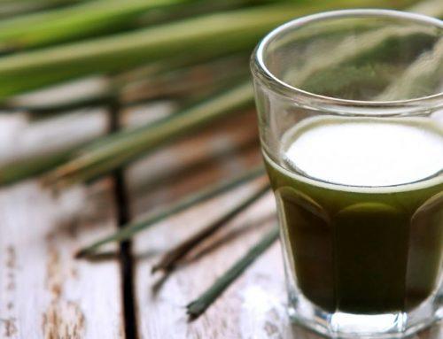 Benefits Of Liquid Chlorophyll